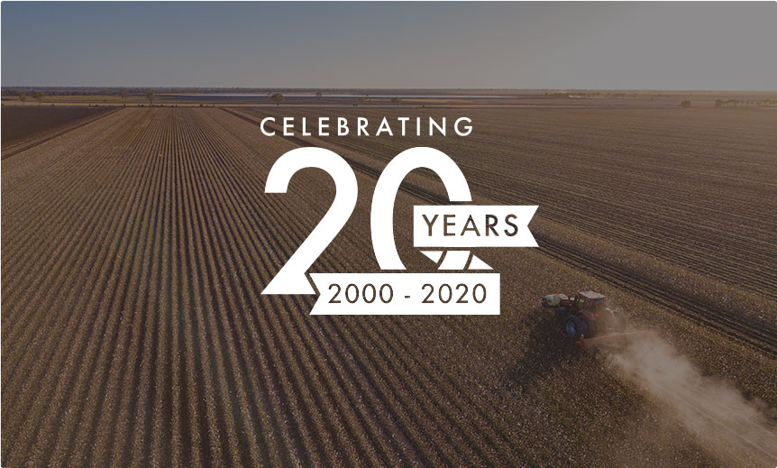 celebrating 20 years banner